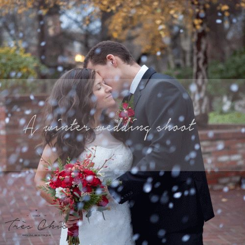 Spark & Whimsy Photography